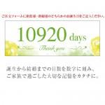 NP-HI-001J